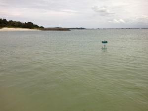 flotsam rubbish sailing boat